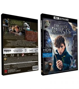 Fantastic-Beasts-and-Where-to-Find-Them-4K+BD-BOX