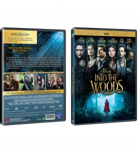 into-the-wood-DVD-Packshot